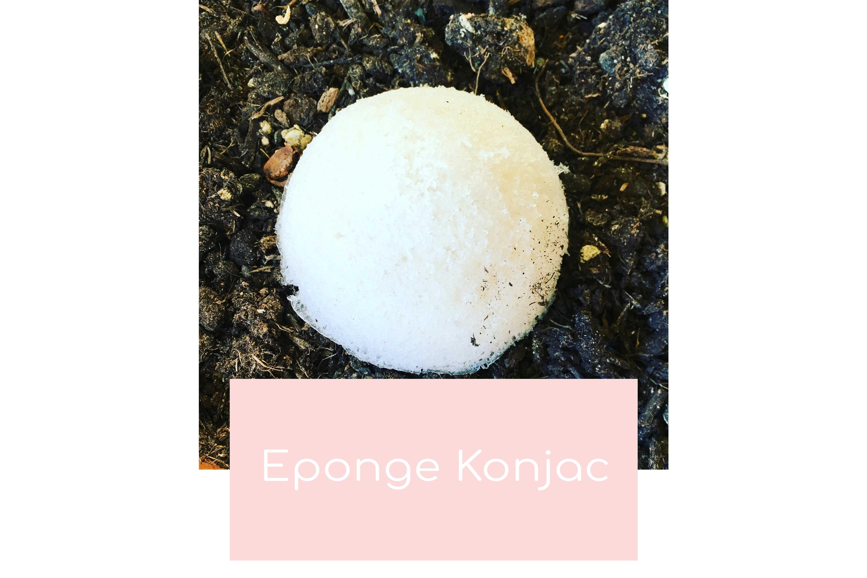 L'éponge Konjac